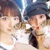 篠田麻里子、秋元才加と猫を抱っこしているツーショット動画